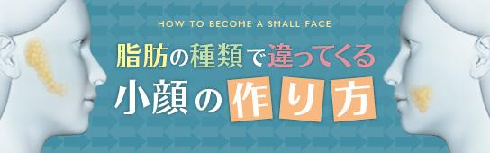 脂肪の種類で違ってくる小顔の作り方