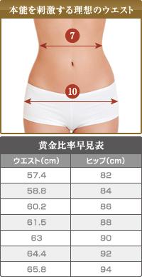 ベイザー脂肪吸引:男性の本能を刺激するウエストとヒップのサイズ